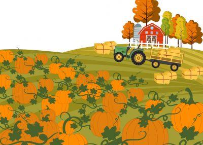 Pilot Census of Agriculture 2020